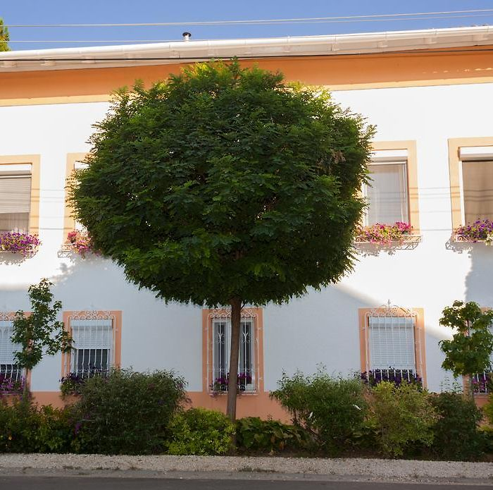 Bed and breakfast Szeged